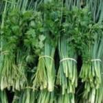 cheiro_verde