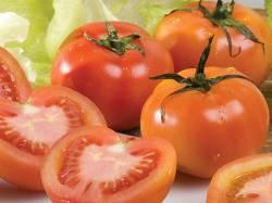 tomate_salada_1
